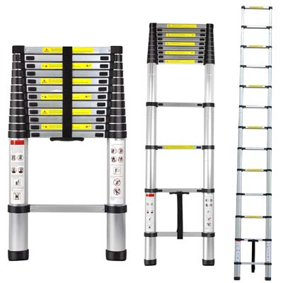 1. Generic Telescoping Extension Ladder