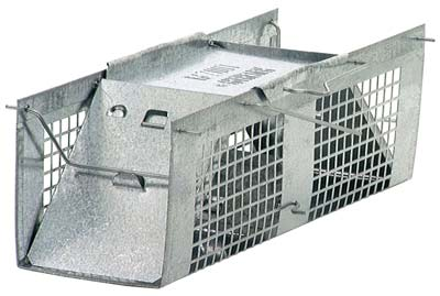 4. Havahart 1020 Live Animal Cage Trap