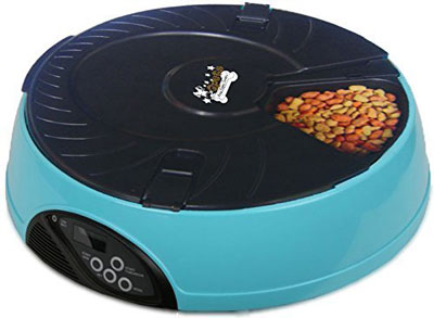 7. Qpets 6 Meal Automatic Pet Feeder