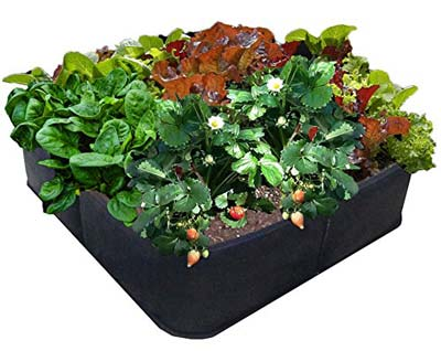10. EZ-Gro Raised Garden Bed