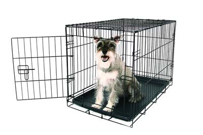 3. Carlson Dog Crate (Medium)