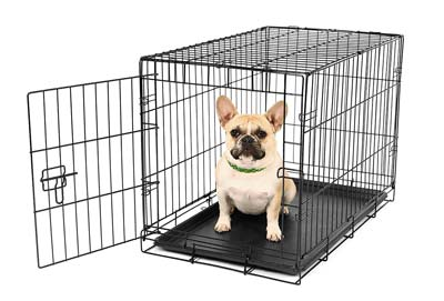 6. Carlson Dog Crate (Small)