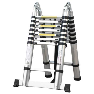 4. Easyfashion Telescopic Extension Ladder