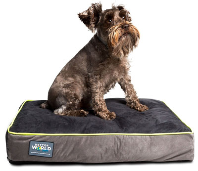 7. Better World Pets Orthopedic Dog Bed