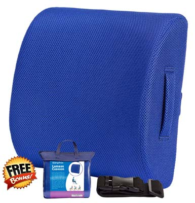 1. Elephix Lower Back Support Pillow