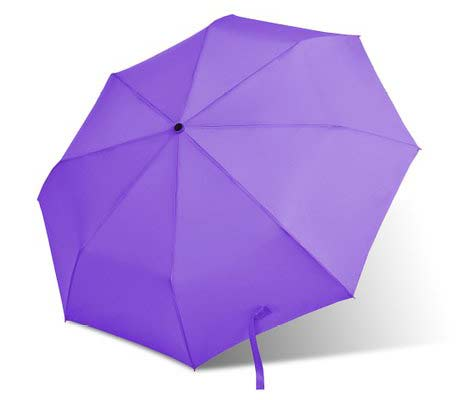 9. Bodyguard Auto Umbrella