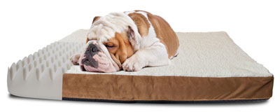 4. OxGord Orthopedic Pet Bed