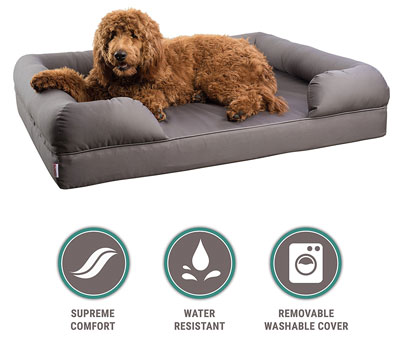 2. Petlo Orthopedic Pet Sofa Bed