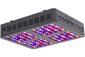 Photo of Top 10 Best LED Grow Lights for Plants in 2020 Reviews