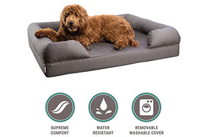 Photo of Top 10 Best Mattress Pet Beds in 2020 Reviews