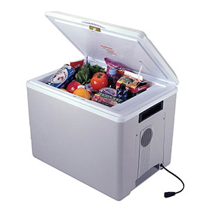 10. Koolatron Kool Kaddy Cooler (36 qt.)