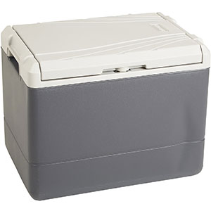 2. Coleman PowerChill Thermoelectric Cooler (40 Quart)