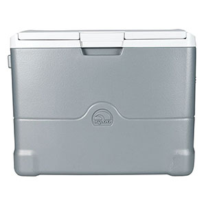 4. Igloo 40 quart Thermoelectric Cooler (00040374)