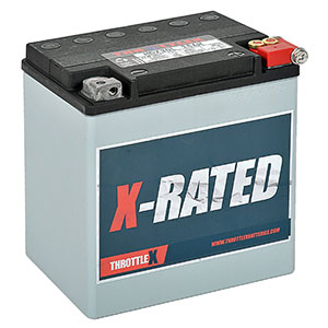 3. ThrottleX Batteries HDX30LHarley Davidson Replacement Motorcycle Battery