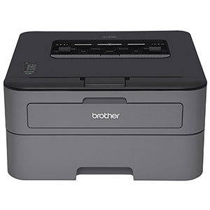 3. Brother Laser Printer (HL-L2300D)