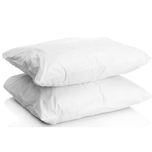 9. Five Star Hotel Bedding Set of Two Silver Pillows