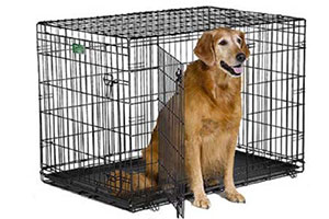 Photo of Top 10 Best Dog Crates & Kennels for Sale in 2019 Reviews