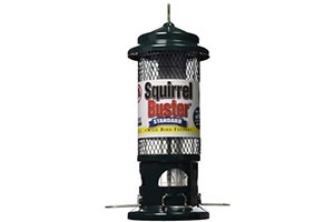 Photo of Top 10 Best Squirrel Proof Bird Feeders for Sale in 2020 Reviews
