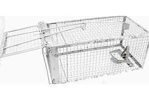 Photo of Top 10 Best Live Rat Traps for Sale in 2019 Reviews
