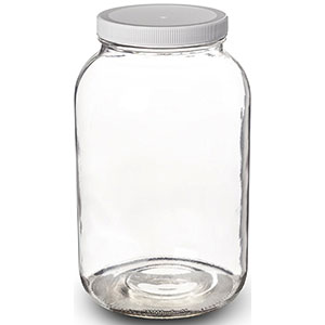 2. Paksh Novelty 1-Gallon Glass Jar Wide Mouth