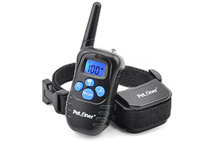 Photo of Top 10 Best Dog Training Collars in 2020 Reviews