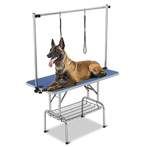 9. Yaheetech Pet Grooming Table