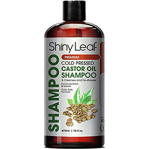 10. Shiny Leaf Castor Oil Shampoo, 16 oz. (473ml)