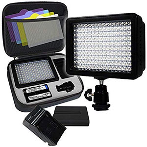 2. LimoStudio AGG1318 160 LED Video Photo Light
