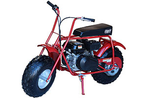 Best Mini Bike for Adults