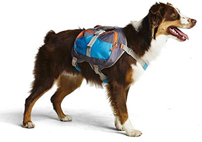 10. Cesar Milan Dog Backpack