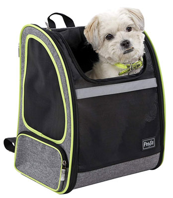 6. Petsfit Comfort Dogs Carriers Backpack