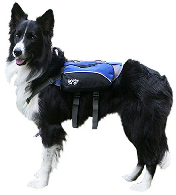 7. 2PET Dog Backpack for Hiking