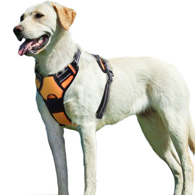 9. Eagloo Metal Ring Dog Harness Padded Soft