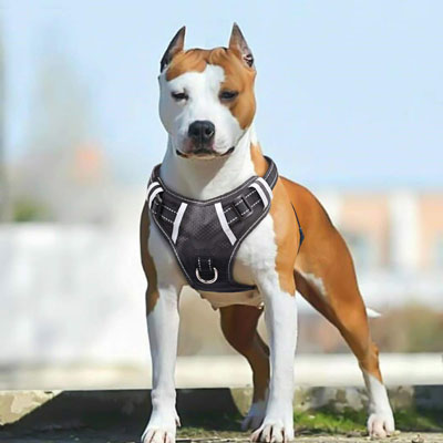 4. Babyltrl Large Dog harness Reflective No-Pull Vest
