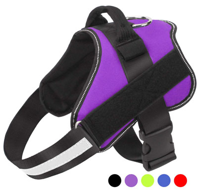 7. Bolux Adjustable Dog Harness Breathable Choking or Tugging