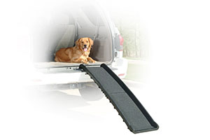 Photo of Top 10 Best Dog Ramps for Car in 2020 Reviews