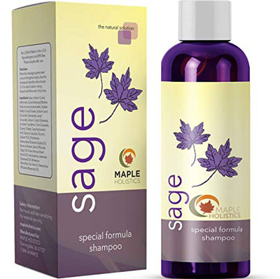 1. Maple Holistics Sage Shampoo for Anti Dandruff