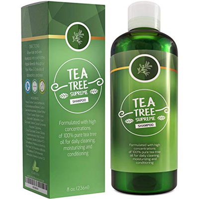 9. Honeydew Sulfate Free Tea Tree Shampoo for Women & Men