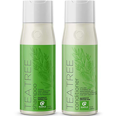 3. Maple Holistics Tea Tree Shampoo and Conditioner for Color Treated Hair